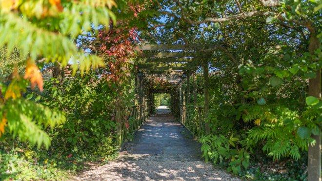 pont reliant la maison de maitre corps et du restaurant. un passage à pied romantique au coeur de la verdure au domaine de bellevue proche de Paris pour passer un séjour ou un weekend romantique