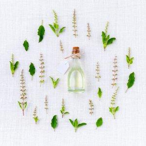 programme detox pour retrouver énergie et bien-être avec les conseils d'une professionnelle en naturopathie