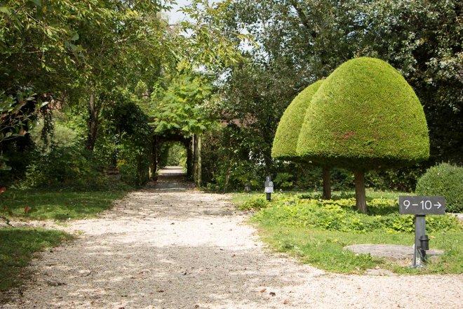 jardin-paysage-arbre-taille-verdure-nature-chemin-graviers