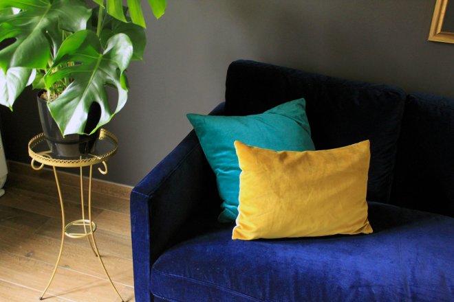 salon-canape-coussin-jaune-cyan-bleu-nuit-plante-verte-parquet