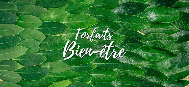 forfaits-bien-etre-departement-77-paris